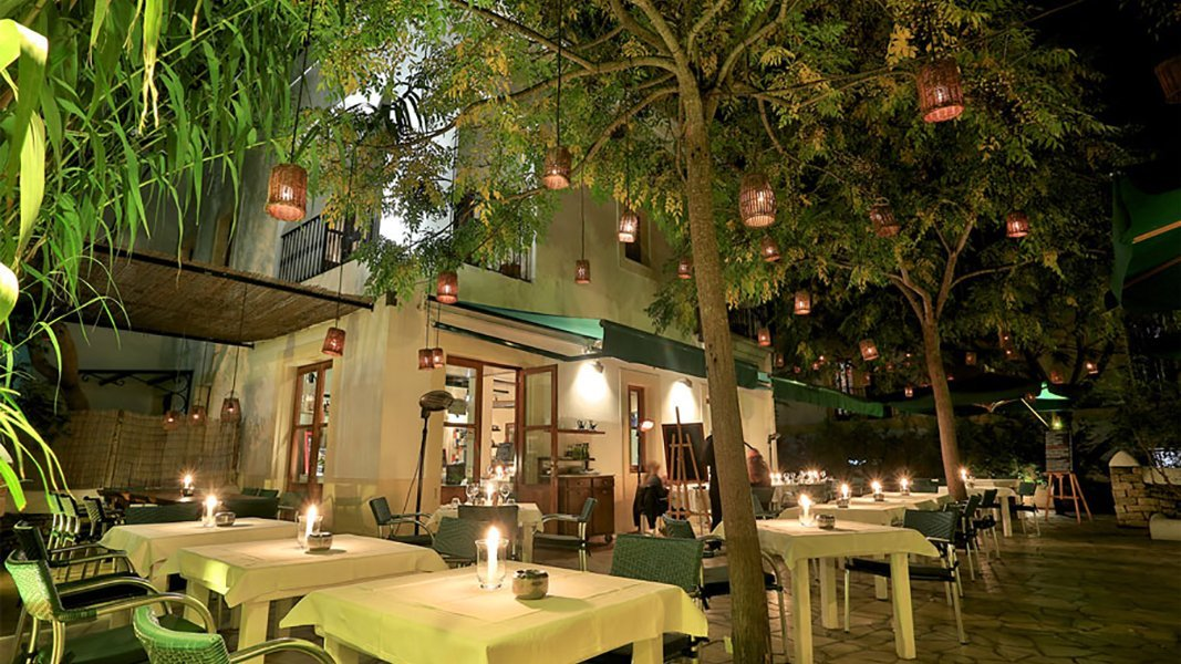 Macao Cafe Spotlight on Santa Gertrudis